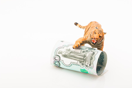 Photo shows the toy tiger and rubles. Concept. Stock Photo