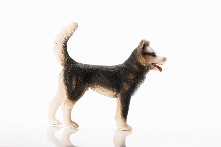 huskies: Photo shows the toy huskies on white. Stock Photo
