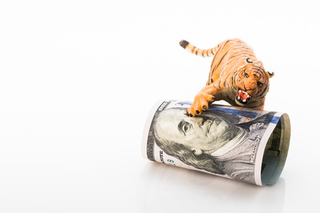 Photo shows the toy tiger and dollars. Concept.