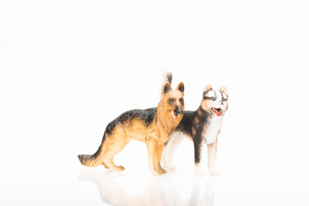 Photo shows the toy dogs on white. Stock Photo