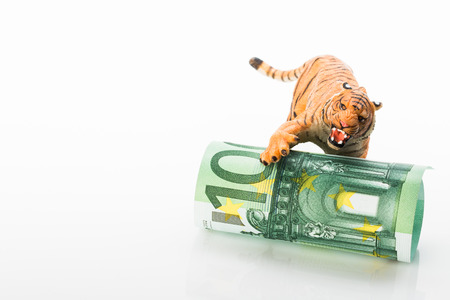 Photo shows the toy tiger and euro. Concept.