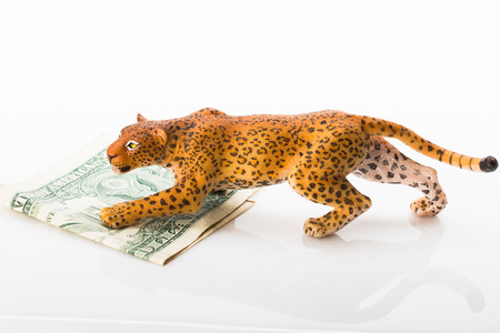 Photo shows the toy jaguar and dollar.