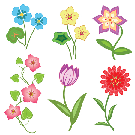 bindweed: Flower set on white background. Camomile, orchid, chrysanthemum, daisy, tulip, bindweed. Colored floral symbols with leaves. Vector isolated