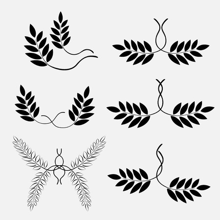 ornaments floral: Laurel tattoo for lesbian. Couple sign icon. Floral abstract composition. Black ornaments, signs on white background. Victory, glory, freedom symbol. Vector isolated.