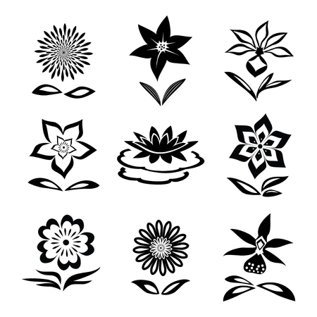 Conjunto de la flor. La manzanilla, lirio, orquídea, lirio de agua. siluetas negras sobre fondo blanco. símbolos aislados de flores y hojas. Vector