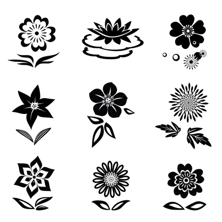 nymphaea: Flower set. Chamomile, lily, orchid, water-lily. Black silhouettes on white background.  Isolated symbols of flowers and leaves. Vector
