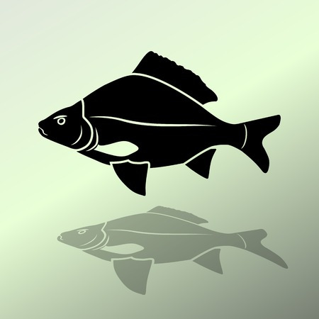 crucian carp: Fish icon. Food symbol. Cyprinidae family. Fresh-water, fish color signs with label on white background. Vector isolated.