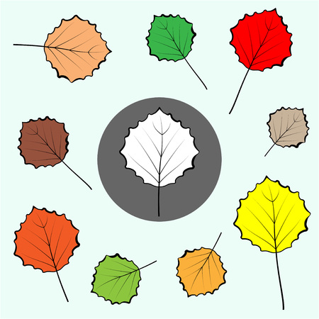 Poplar coloured leaves icons set. Leaf sign icon. Botany symbol. Circle grey button with autumn leaves. Vector