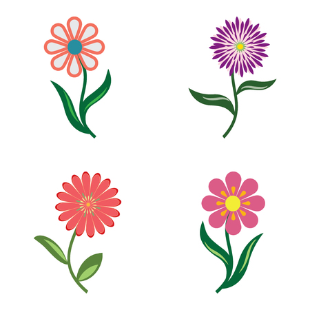 Flower icon set. Camomile, chamomile, daisy, chrysanthemum. Floral symbol. Red, lilac, pink colored signs on white. Vector