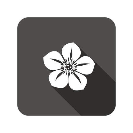 nasturtium: Hellebore, Caltha flower icons. Spring floral symbol. Round circle flat icon with long shadow. Vector