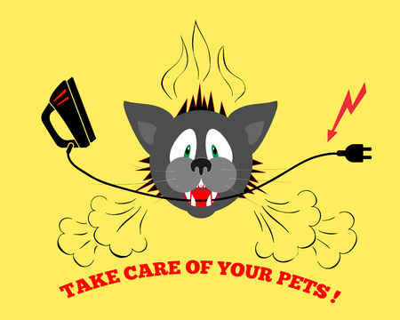 bite: Cats head bite electrical wire, cable. Care of pets. Danger info illustration. Pets insurance symbol. Vector Illustration