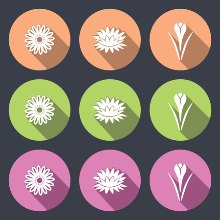 nymphaea: Flower icon set. Camomile, daisy, lily, water-lily, crocus, saffron. Floral symbol. White sign on round green, rose, cream, soft, lilac flat buttons with long shadow dark gray background. Vector isolated.