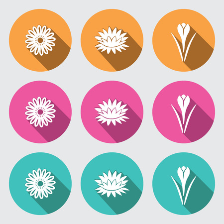 nymphaea: Flower icon set. Camomile, daisy, lily, water-lily, crocus, saffron. Floral symbol. White sign on round turquoise, orange, rose buttons with long shadow. Vector Illustration