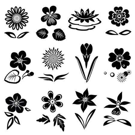 nymphaea: Flower set. Nasturtium primula lily viola anemone crocus gowan dog-daisy orchid. Spring and summer flowers. Floral black symbols with leaves. May be used in cuisine. Vector Illustration
