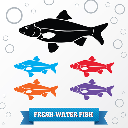 crucian: Fish icon. Food symbol. Cyprinidae family Crucian . Fresh-water, fish color signs with label on white background. Vector isolated.