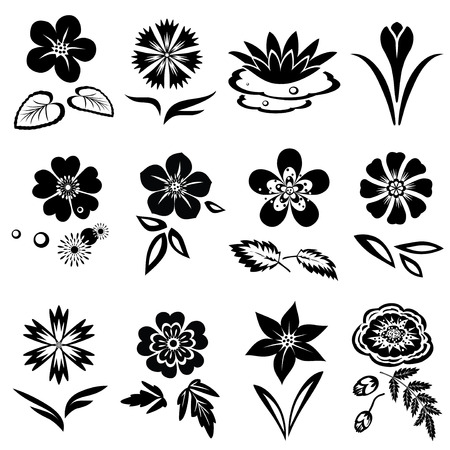 Flower set. Nasturtium, primula, lily, viola, anemone, crocus, cornflower, poppy, orchid. Floral black symbols with leaves. May be used in cuisine. Vector isolated