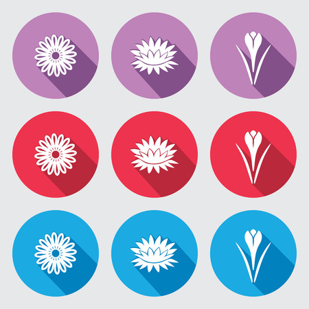 nymphaea: Flower icon set. Chamomile, daisy, lily, crocus, saffron. Floral symbol. White silhouette on round flat buttons with long shadow. Red, blue, violet signs. Vector isolated.