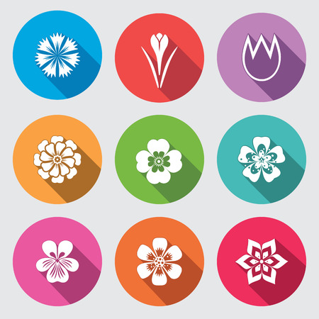 nasturtium: Flower icon set. Camomile, daisy, tulip orchid crocus, saffron cornflower dahlia aster gowan. Floral, herbs symbol. Round colorful flat signs with long shadow. Vector Illustration