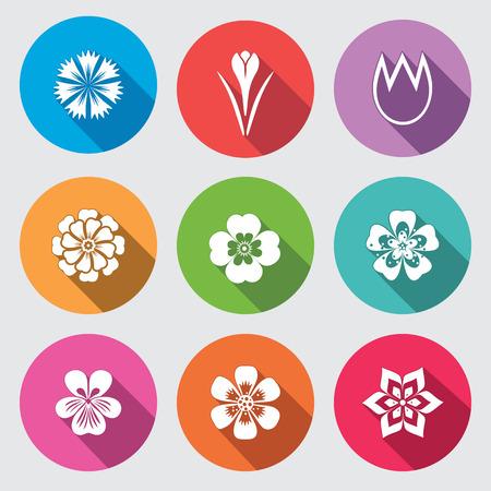Insieme dell'icona di Fiore. Camomilla, margherita, tulipano orchidea crocus, lo zafferano fiordaliso dalia aster Gowan. Floreale, erbe simbolo. segni piatti rotondi colorati con lunga ombra. Vettore Archivio Fotografico - 69161482