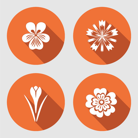 nasturtium: Flower set. Primula, viola, blue poppy, Crocus, Saffron. Spring flowers. Floral symbols with leaves. Color icons. May be used in cuisine. Vector isolated. Illustration