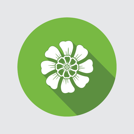 aster: Flower icon. Chamomile, aster, daisy, chrysanthemum. Summer, autumn floral symbol. Round flat sign with long shadow. Vector isolated.