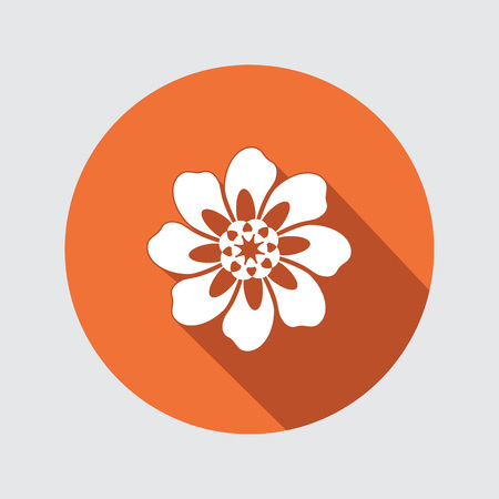 aster: Flower icon. Chamomile, aster, daisy, chrysanthemum sign. Summer, autumn floral symbol. Round flat button with long shadow. Vector isolated.