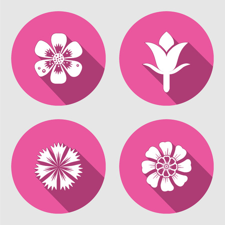 cloves: Flower icons set. Chamomile, daisy, blue poppy, Cloves. Spring flowers. Floral symbols with leaves. Colored signs. May be used in cuisine. Vector isolated.