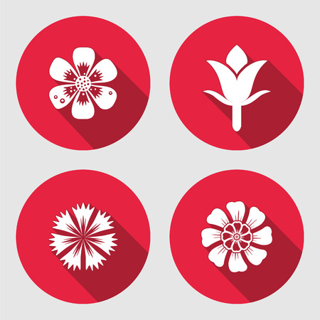 cloves: Flower icons set. Chamomile, daisy, blue poppy, cloves. Floral symbols. Round circle flat sign with long shadow. May be used in cuisine. Vector