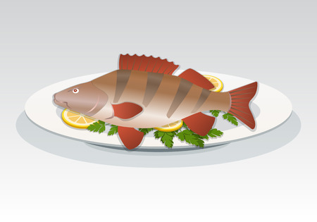 white perch: Fish icon. Perch on white plate with lemon and herbs. Food, seafood dish symbol. Percidae family. Colored sign  gray background. Vector isolated Illustration