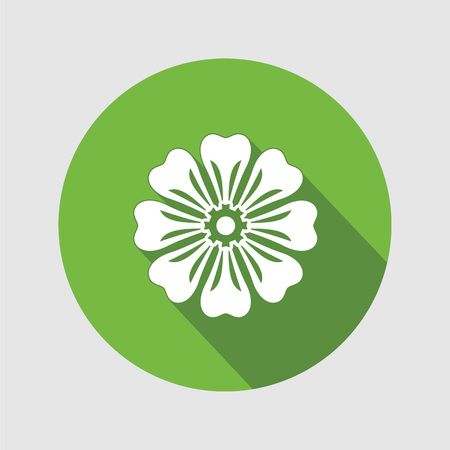 Flower icon. Chamomile, aster, daisy, chrysanthemum. Spring, summer, floral medicinal herbs symbol. Round circle flat sign with long shadow. Vector