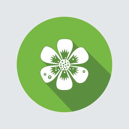 primula: Primula flower icons. Spring flowers. Floral symbol. Round flat icon with long shadow. May be used in cuisine. Vector isolated.