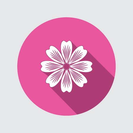 primula: Flower icon. Chamomile, aster, daisy, chrysanthemum sign. Summer, autumn floral symbol. Round flat button with long shadow. Vector isolated.