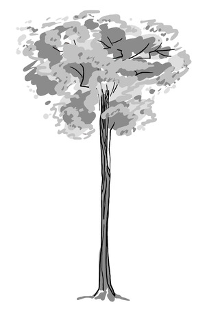 Tree sketch. Black and white drawing isolated on white background. Simple art. Can be used for card banner template. Vector illustration.