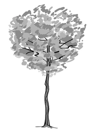 Single tree sketch. Black and white drawing isolated on white background. Simple art. Can be used for card banner template. Raster copy illustration.