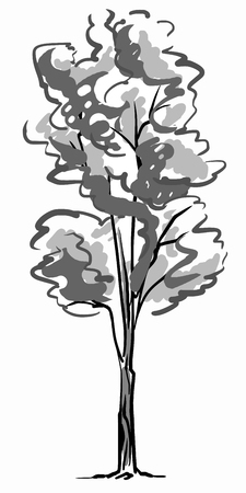 Single tree sketch. Black and white drawing isolated on white background. Simple art. Can be used for card banner template.
