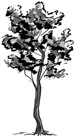 Deciduous tree sketch. Black contour isolated on white background. Simple art. Can be used for card banner template. Raster copy illustration.