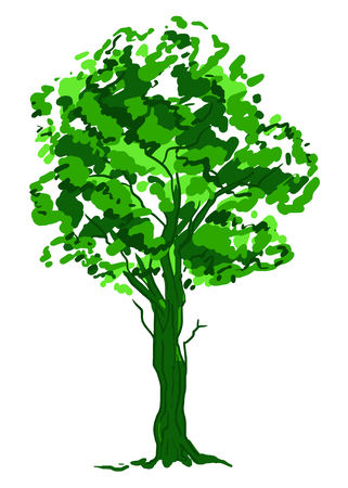 Deciduous tree sketch. Green contour isolated on white background. Simple art. Can be used for card banner template. Vector illustration. Stockfoto