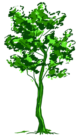 Deciduous tree sketch. Green contour isolated on white background. Simple art. Can be used for card banner template. Raster copy illustration