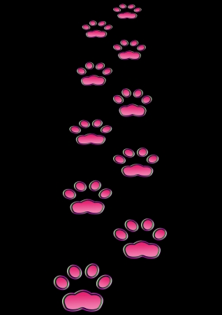 pink pussy: Cat prints  in the night - Neon effect Stock Photo