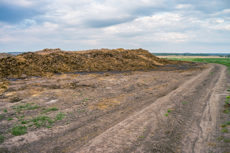 Organic cow compost for agricultural soil cultivation