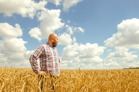 old farmer: Happy smiling successful caucasian thirty years old farmer standing proud in front of his wheat fields Stock Photo