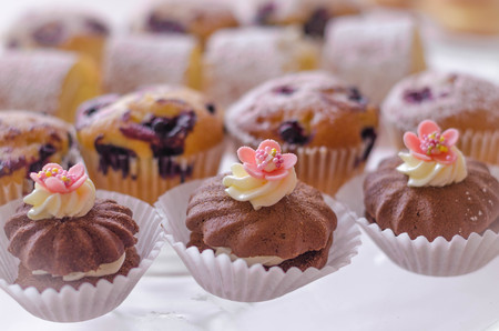 chocolaty: colorful small different cake collection on the plate