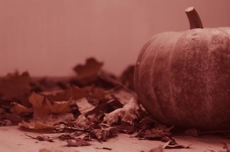 Herbstlaub auf hölzernem Hintergrund, Fallblattrahmen mit Hagebutten, rote Beeren, Kegel und erntenden den orange Kürbis, selektiver Fokus, getont. Danksagungskarte Standard-Bild - 86897884