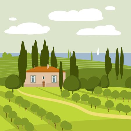 cypress: Italian countryside landscape, vector, illustration