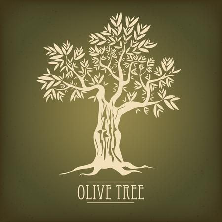 Olive tree on vintage paper.