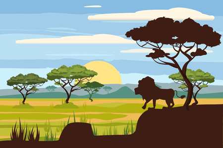 African landscape, lion, savannah, sunset, vector, illustration, cartoon style, isolated