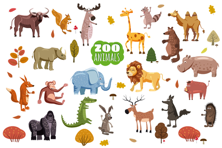 Big set of wild cartoon vectors. African, Australian, Asian, South and North American fauna predators and herbivorous species. Cartoon style, isolated