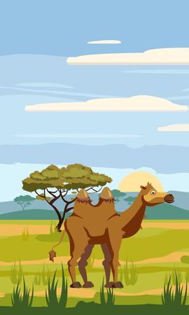 Camel cute cartoon style in background savannah Africa, isolated, vector