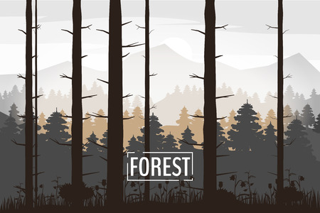 Forest, silhouettes, trees, pine fir nature environment horizon panorama vector