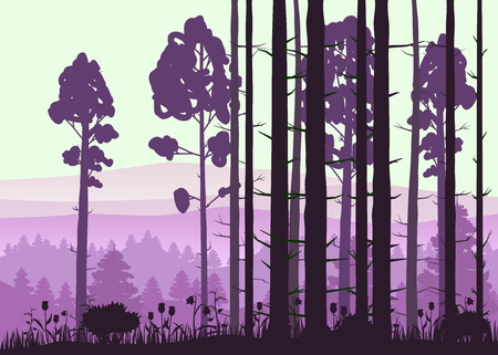 Forest landscape minimalistic illustration. Pines trees silhouettes. Nature scene.